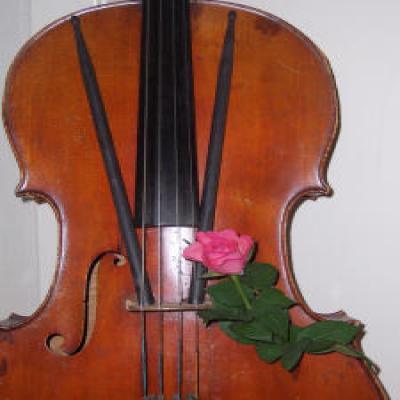 Нажмите здесь чтобы узнать больше о музыке участника jamlady